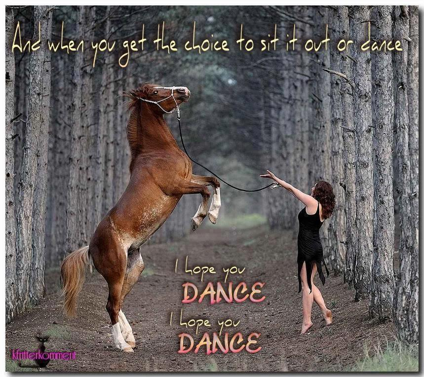 horse I hope you dance